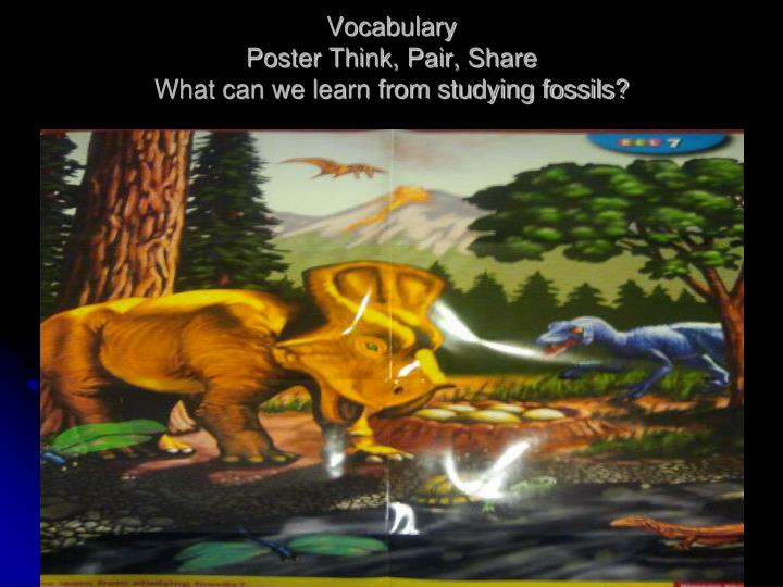 vocabulary poster think pair share what can we learn from studying fossils n.