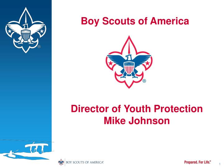 boy scouts of america n.