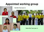 appointed working group