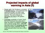 projected impacts of global warming in asia 1