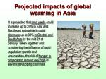 projected impacts of global warming in asia