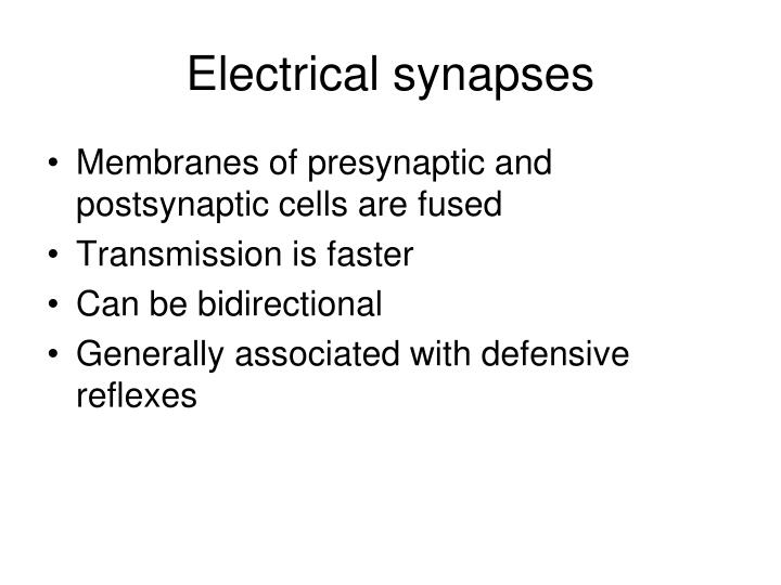 Electrical synapses