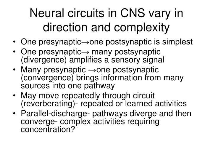 Neural circuits in CNS vary in direction and complexity
