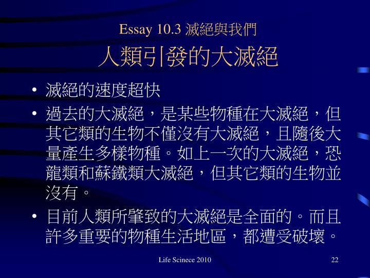 Essay 10.3
