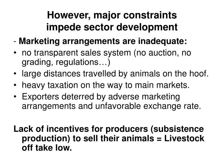 However major constraints impede sector development