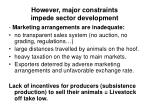 however major constraints impede sector development