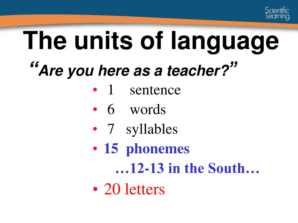 The units of language