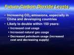future carbon dioxide levels