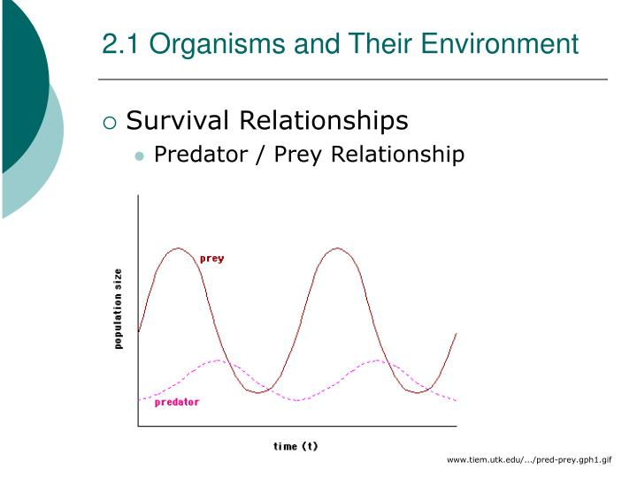 2.1 Organisms and Their Environment