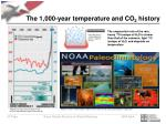 the 1 000 year temperature and co 2 history