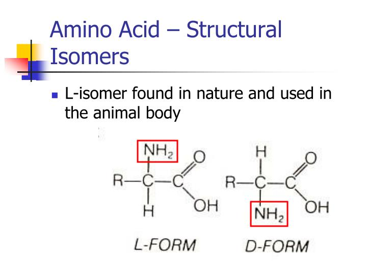 Amino Acid – Structural Isomers