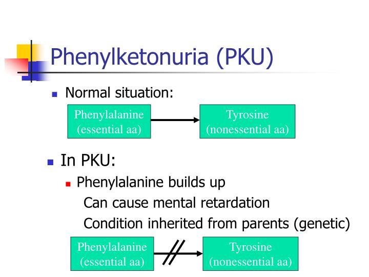Phenylalanine (essential aa)