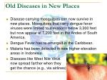 old diseases in new places26
