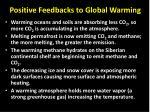 positive feedbacks to global warming