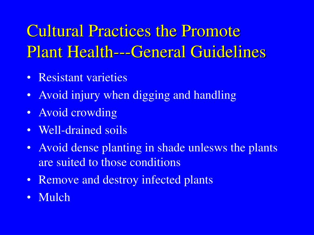 Cultural Practices the Promote