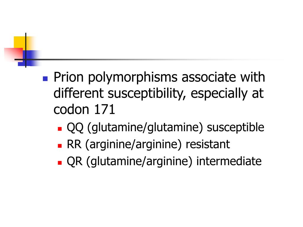 Prion polymorphisms associate with different susceptibility, especially at codon 171