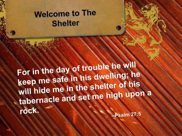 Welcome to The Shelter