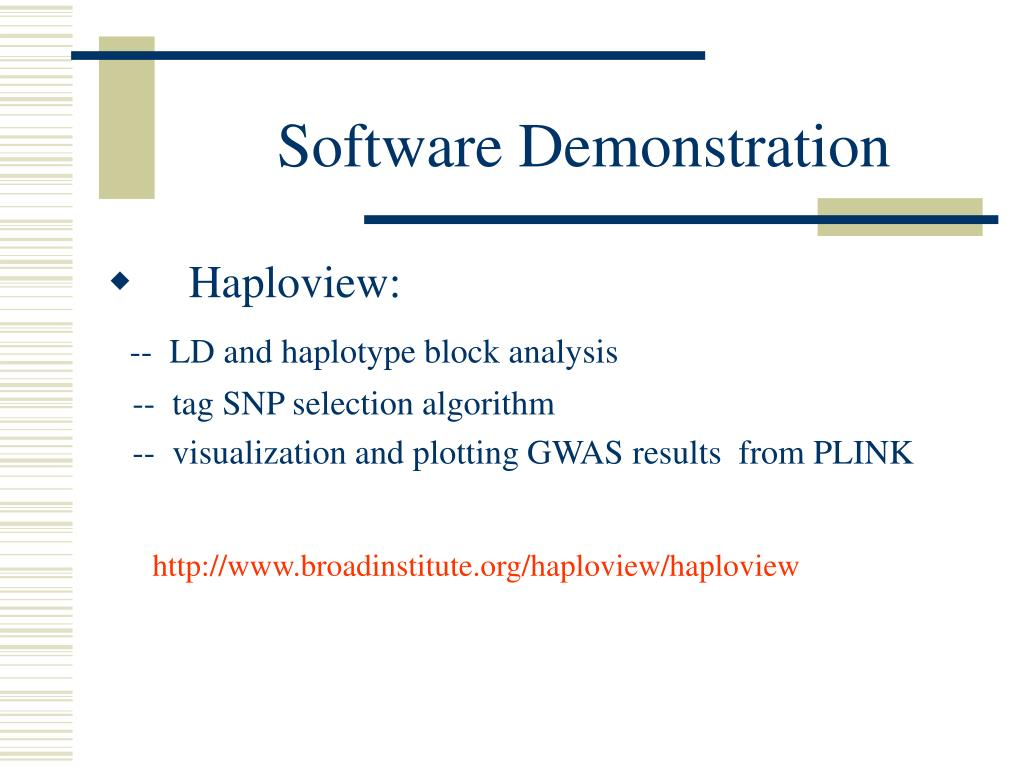 Software Demonstration