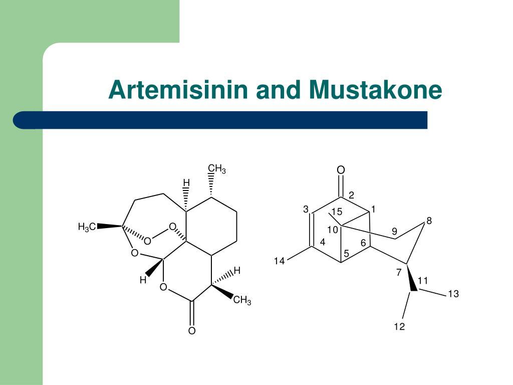 Artemisinin and Mustakone