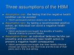 three assumptions of the hbm