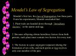 mendel s law of segregation