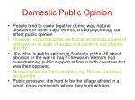 domestic public opinion