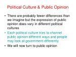 political culture public opinion