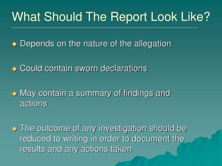 What Should The Report Look Like?