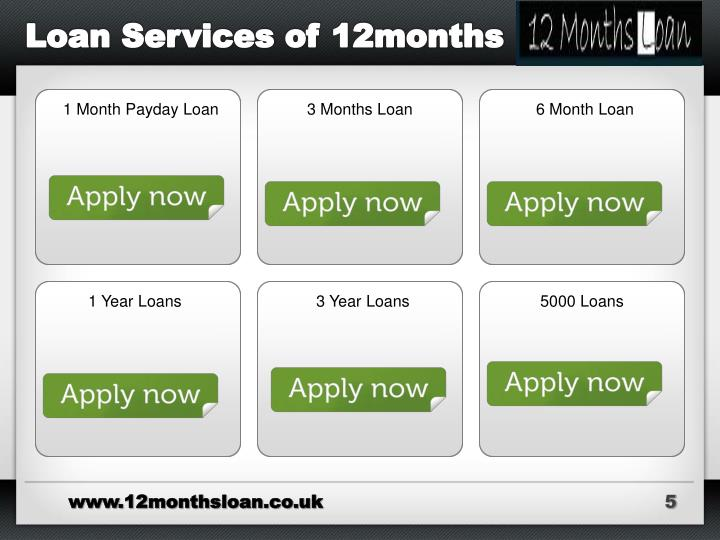 Loan Services of 12months