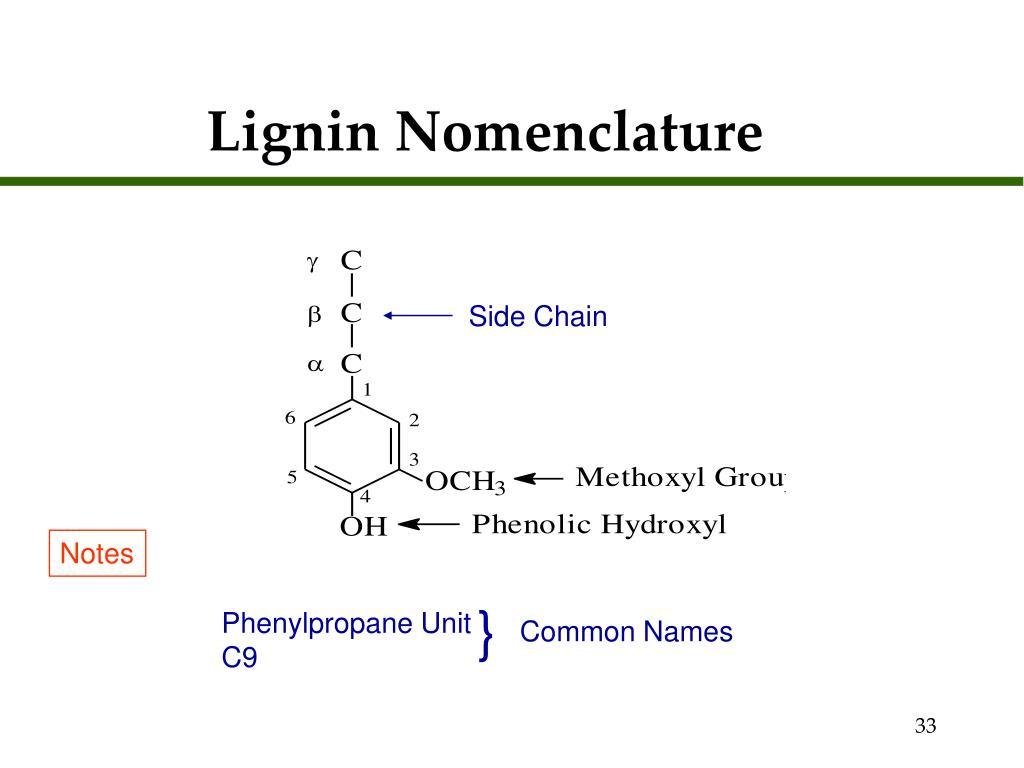 Lignin Nomenclature