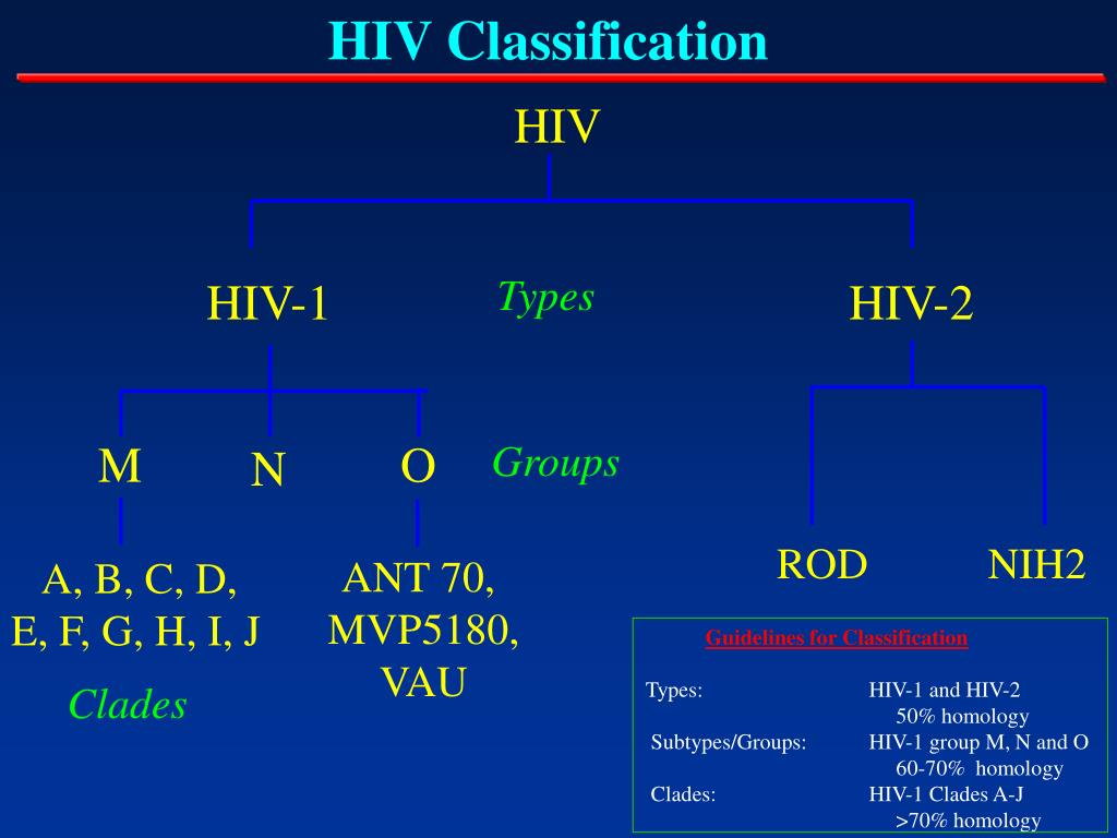 HIV Classification
