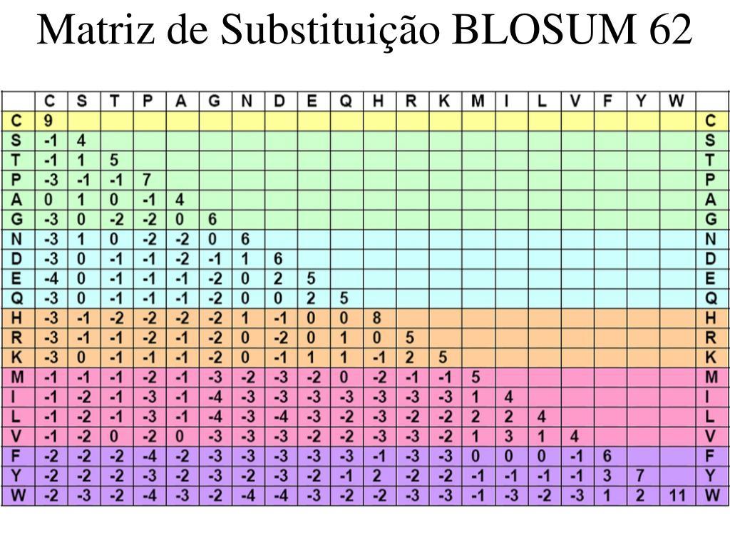Matriz de Substituição BLOSUM 62