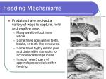 feeding mechanisms11