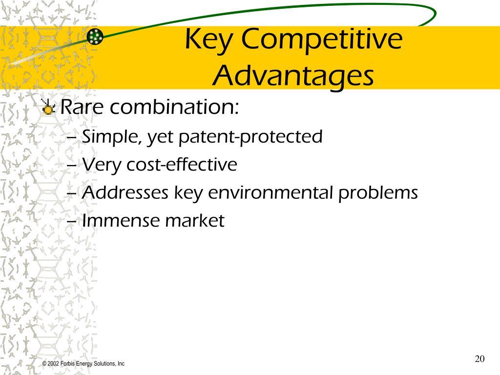 Key Competitive Advantages