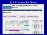 blast from orf finder