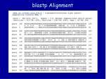blastp alignment