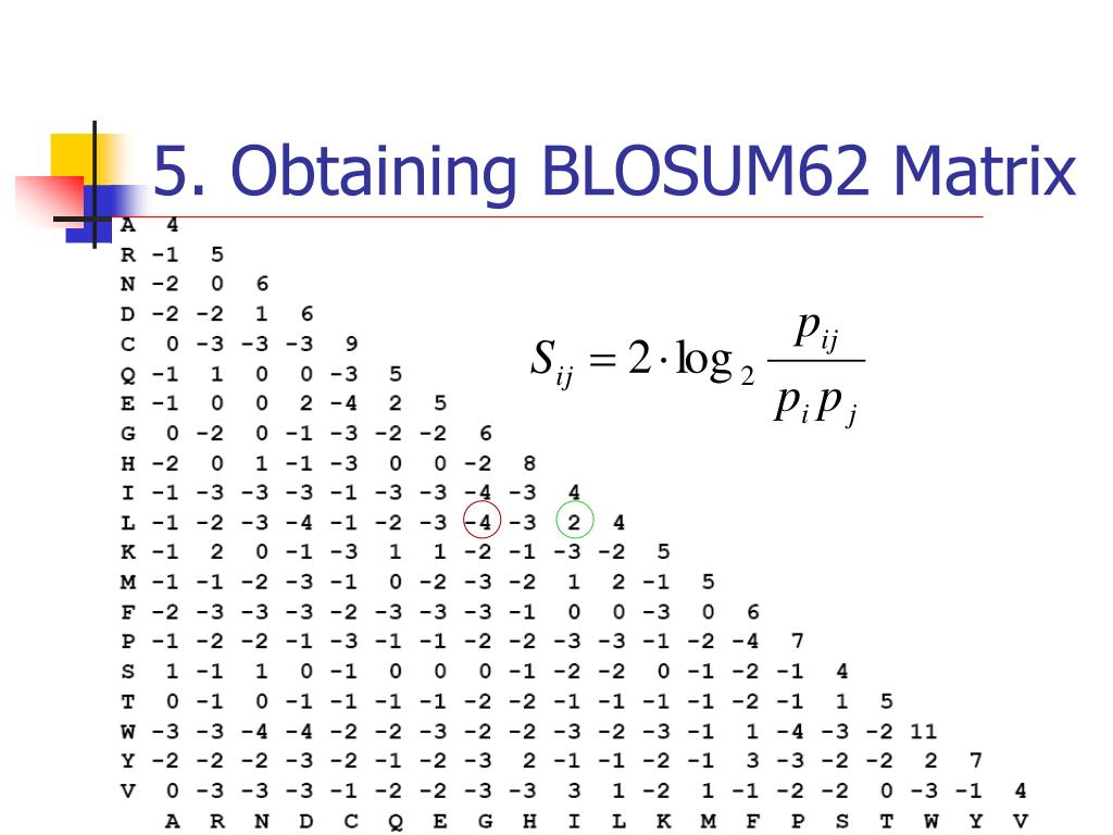 5. Obtaining BLOSUM62 Matrix