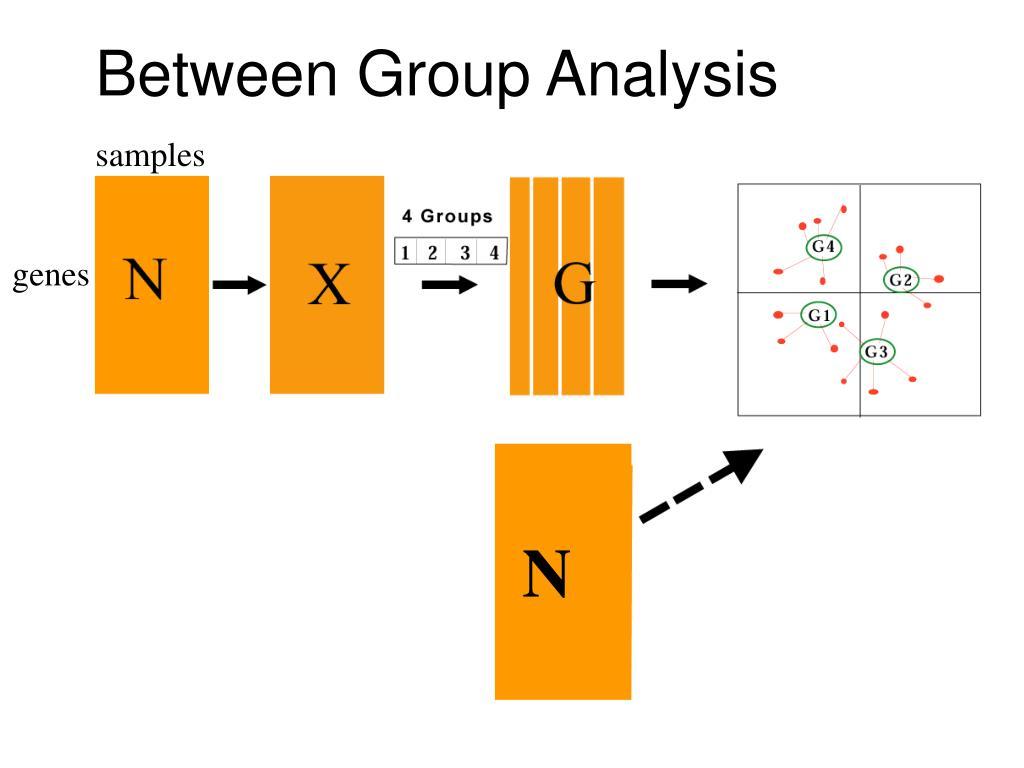 Between Group Analysis
