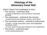 histology of the alimentary canal wall