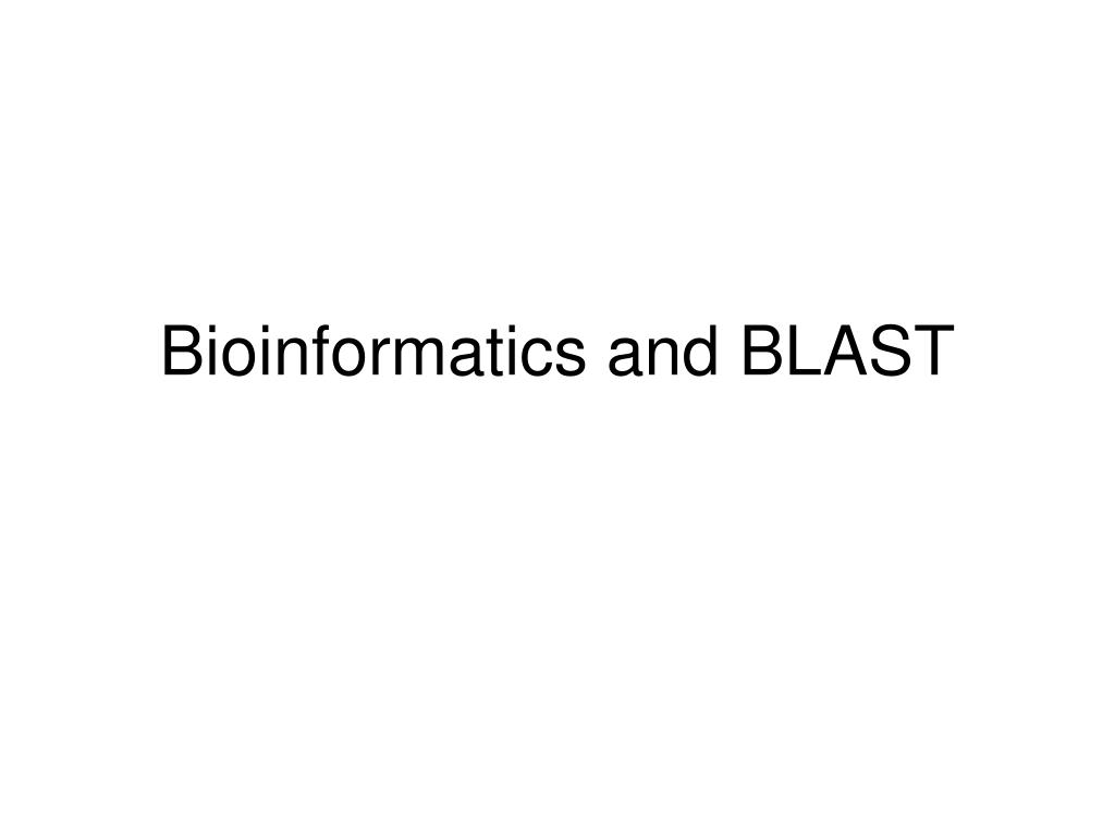 bioinformatics and blast l.