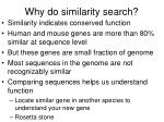 why do similarity search