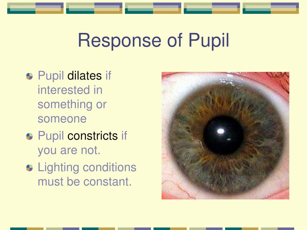 Response of Pupil