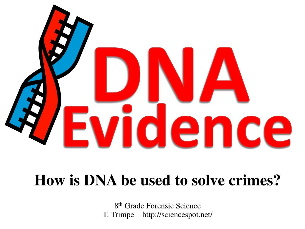 how is dna be used to solve crimes 8 th grade forensic science t trimpe http sciencespot net l.