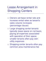 lease arrangement in shopping centers