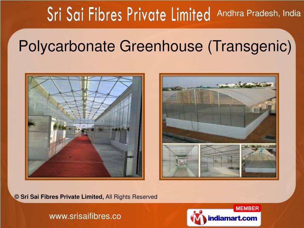 Polycarbonate Greenhouse (Transgenic)