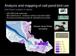 analysis and mapping of salt pond bird use