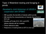 topic 3 waterbird nesting and foraging in ponds