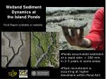 wetland sediment dynamics at the island ponds