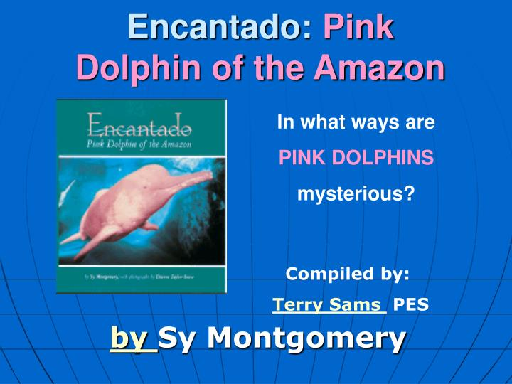 encantado pink dolphin of the amazon n.