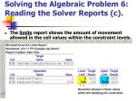 solving the algebraic problem 6 reading the solver reports c